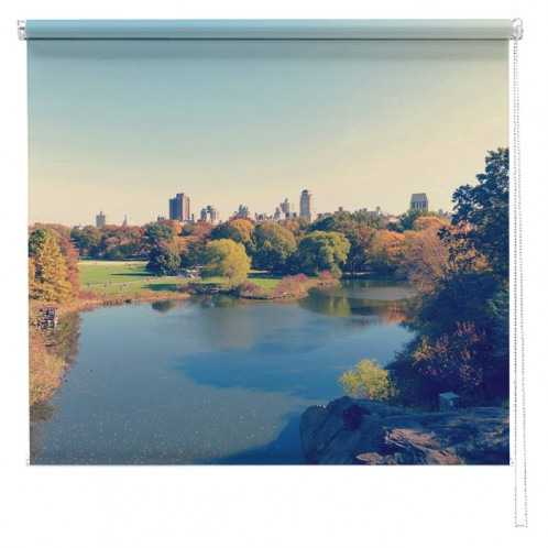 Central Park New York autumn view printed blind