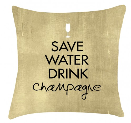 save water drink champagne cushion