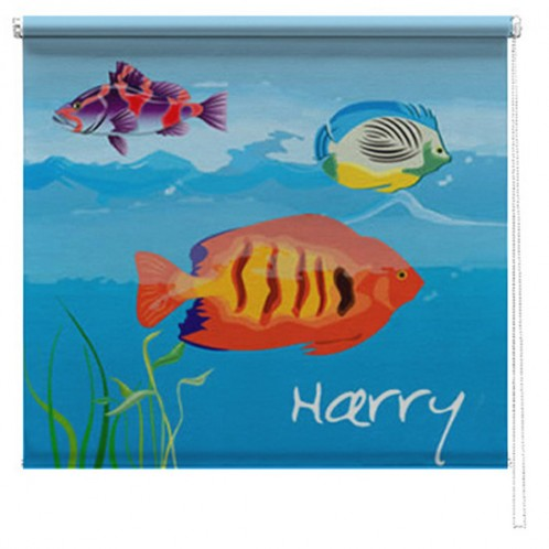 Fish printed childrens blind