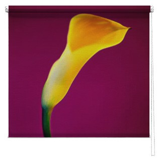 Yellow Lilly Flower printed blind