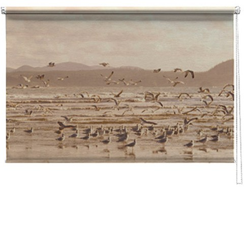 Sea birds printed blind