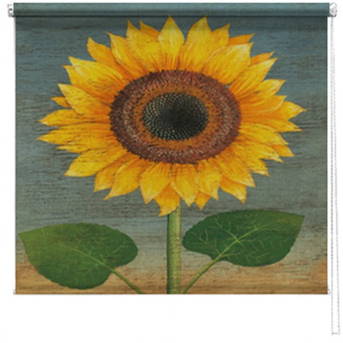 Sunflower printed blind martin wiscombe