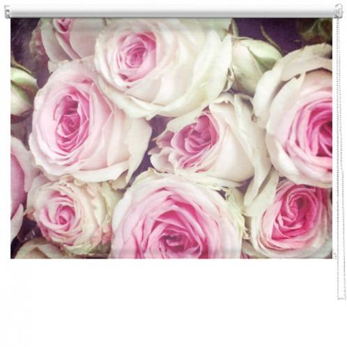 Roses printed blind