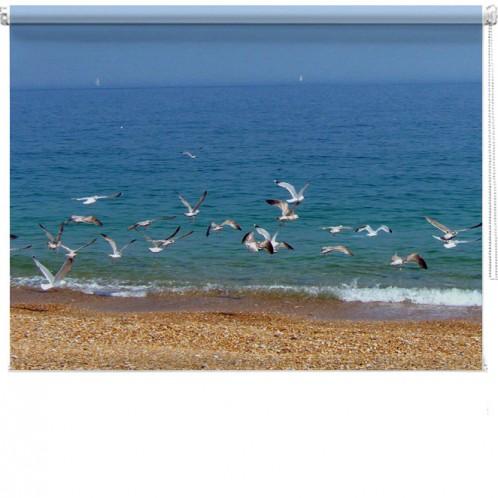 seagull beach printed bind