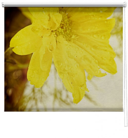 Yellow flower printed blind