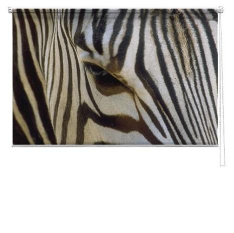 Zebra printed blind