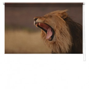 Lion printed blind