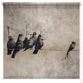 Banksy Pigeons printed blind