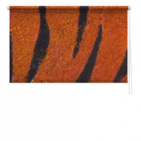 Tiger skin printed blind