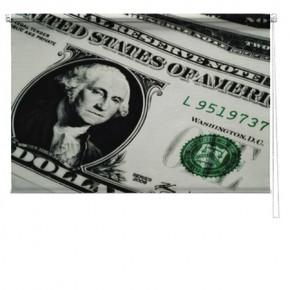 Dollar printed blind