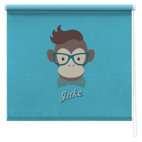 Personalised Clever Monkey blind
