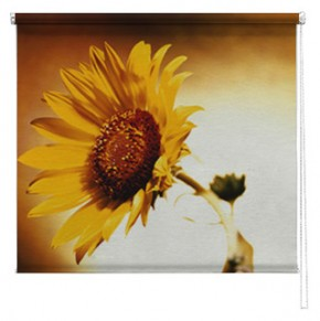 Sunflower printed blind