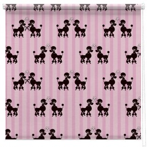 French poodles printed blind
