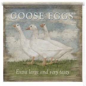 Goose Eggs printed blind Martin Wiscombe