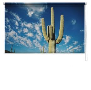 Cactus printed blind