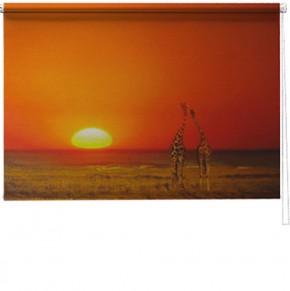African love printed blind