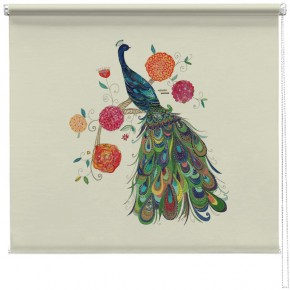 Beautiful Peacock printed blind kim anderson