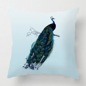Vintage Peacock cushion