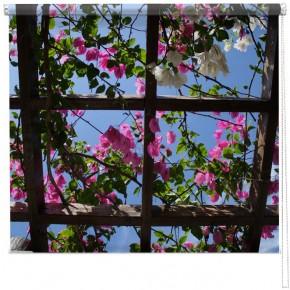 flower pergola blind