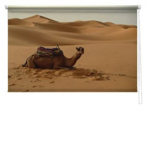 Camel printed blind