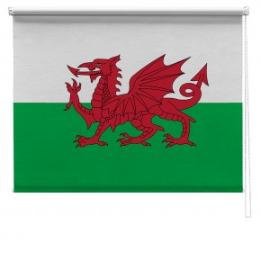 Welsh flag printed blind