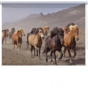 Wild horses printed blind