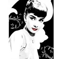 Audrey Heburn printed blind