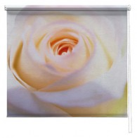 Rose Flower printed blind