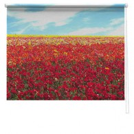 poppy field printed blind