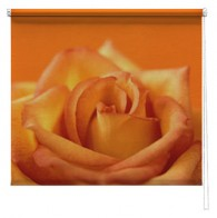 Orange Rose Flower printed blind