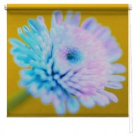 Flower Printed roller blind