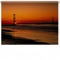 Golden Gate bridge printed blind