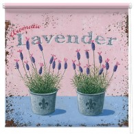 Lavendar plants printed blind martin wiscombe