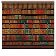 Library bookshelf printed blind