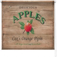 Cox's apples printed blind martin wiscombe