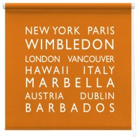 personalised bus blind printed roller blind ORANGE