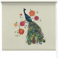 Beautiful Peacock printed blind kim anderson