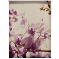 Wisteria flower blind
