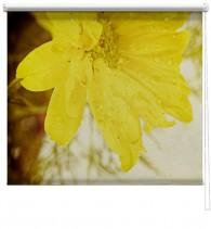 Yellow flower printed blind
