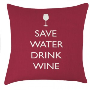 Save Water drink Wine cushion