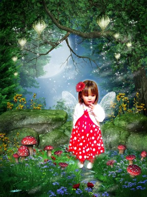 'Enchanted Fairyland' fairytale photo art