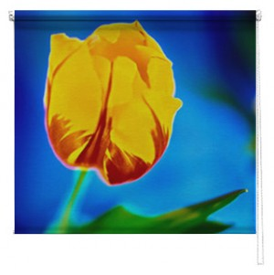 Yellow Tulip Printed roller blind