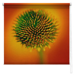 Flower Printed roller blind