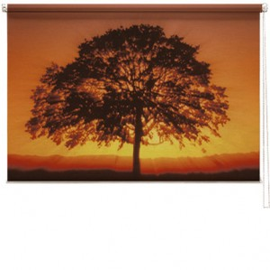 Sunset Tree printed blind