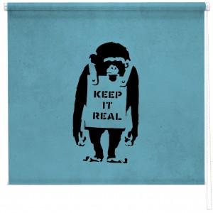 Banksy chimp sized printed blind
