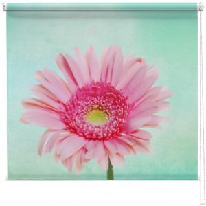 Pastel Gerbera flower printed blind