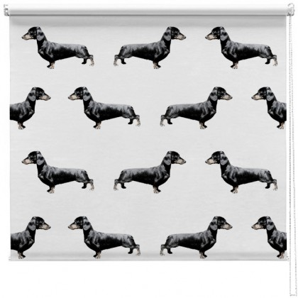 Dachshund Sausage dog Pattern blind