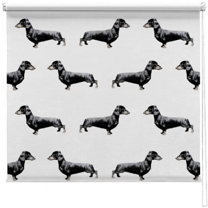 Dachshund Sausage dog Pattern blind
