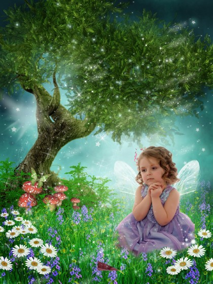 'Enchanted Meadow' fairytale photo art