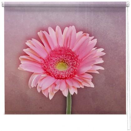 Hazy Gerbera flower printed blind